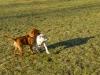 chulo-mar-2012-100