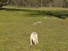 chulo-mar-2012-20