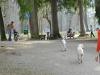 chulo-mar-2012-369