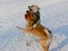 chulo-feb-2012-102