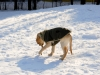 chulo-feb-2012-127
