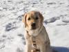 chulo-feb-2012-192